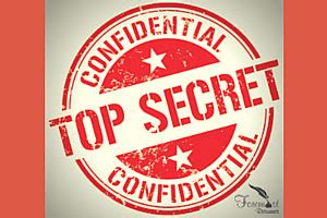 The Confidential Job Search ResumePower